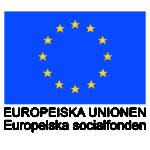 EU_flagga_EurSocfond_cmyk arial_700